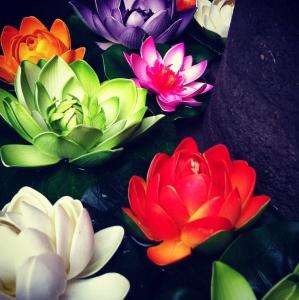 flowers-1397742-m