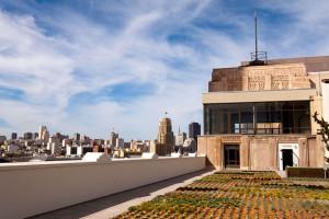twitter-rooftop_20689