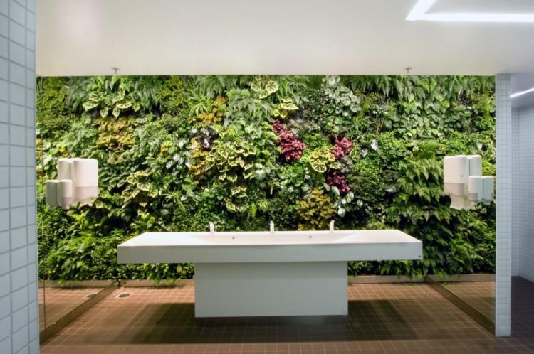 office greenery. Greenery In Office 3 S