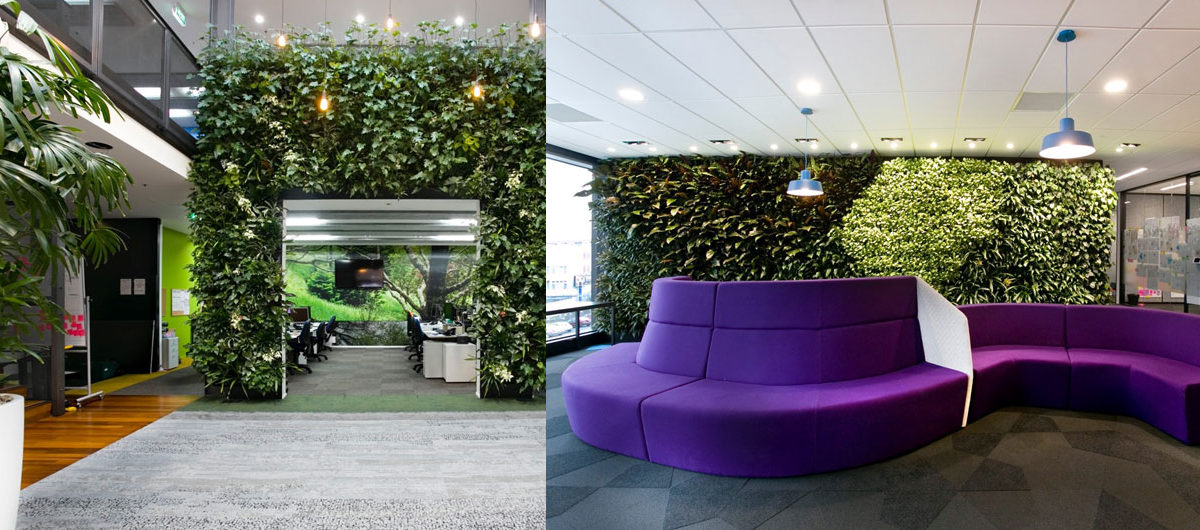 How to bring biophilic design elements into your office